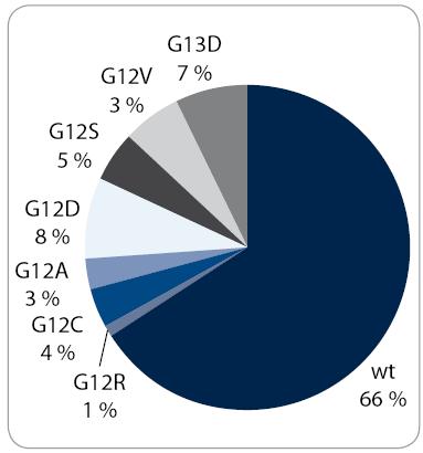 Četnost a specifikace zachycených mutací v genu KRAS v analyzovaném souboru 132 pacientů. Znázornění procentuálního zastoupení pacientů se zachycenou bodovou mutací v genu KRAS (kodon 12 a 13) a pacientů s nemutovaným genem KRAS (wt – wild type).