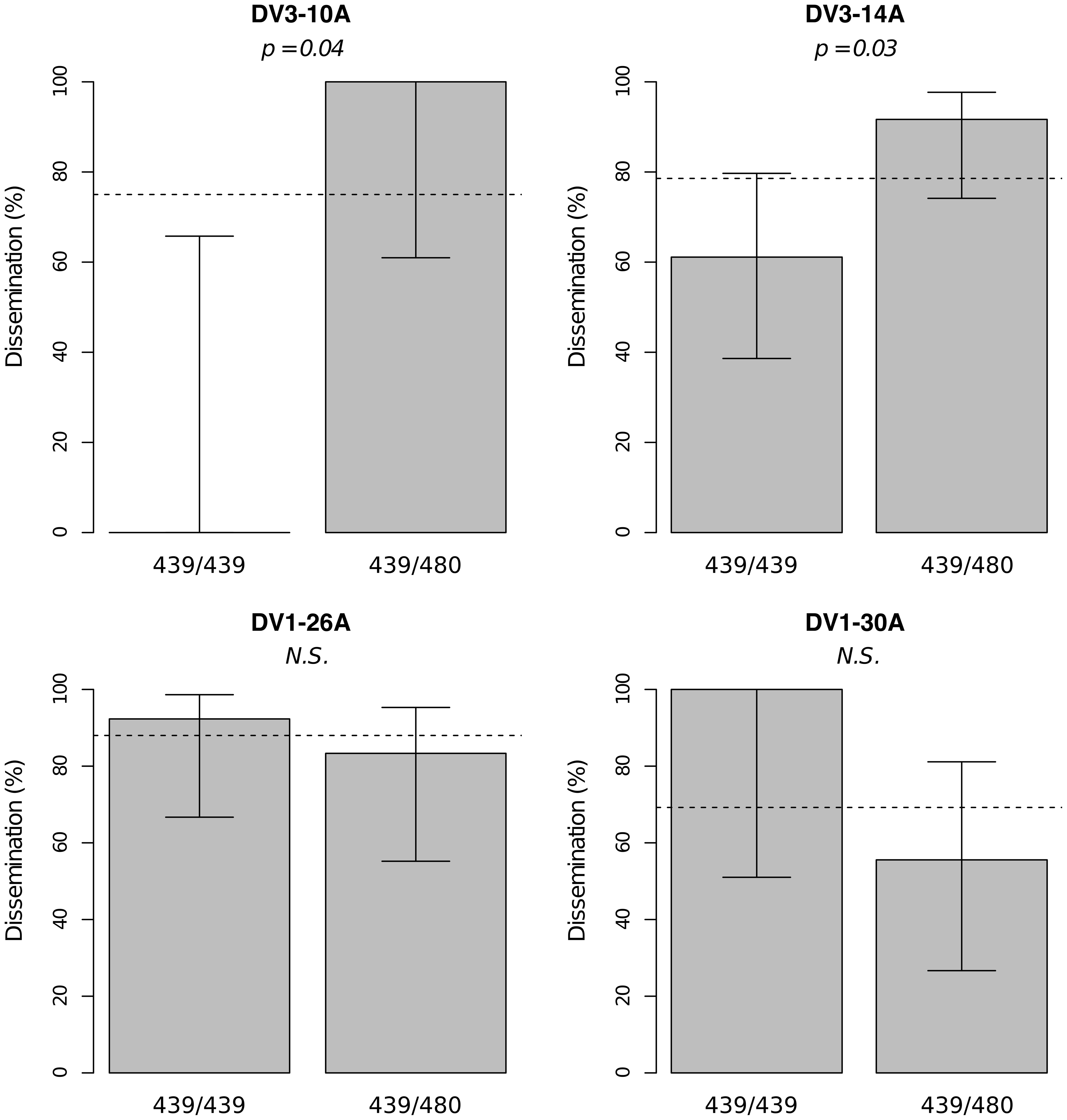 Isolate-specific association between marker 335CGA1 genotype and viral dissemination.
