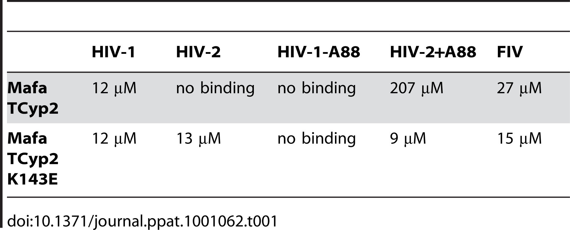 Affinities of cyclophilin domain binding to N terminal domain capsids, as measured by isothermal titration calorimetry, are shown.