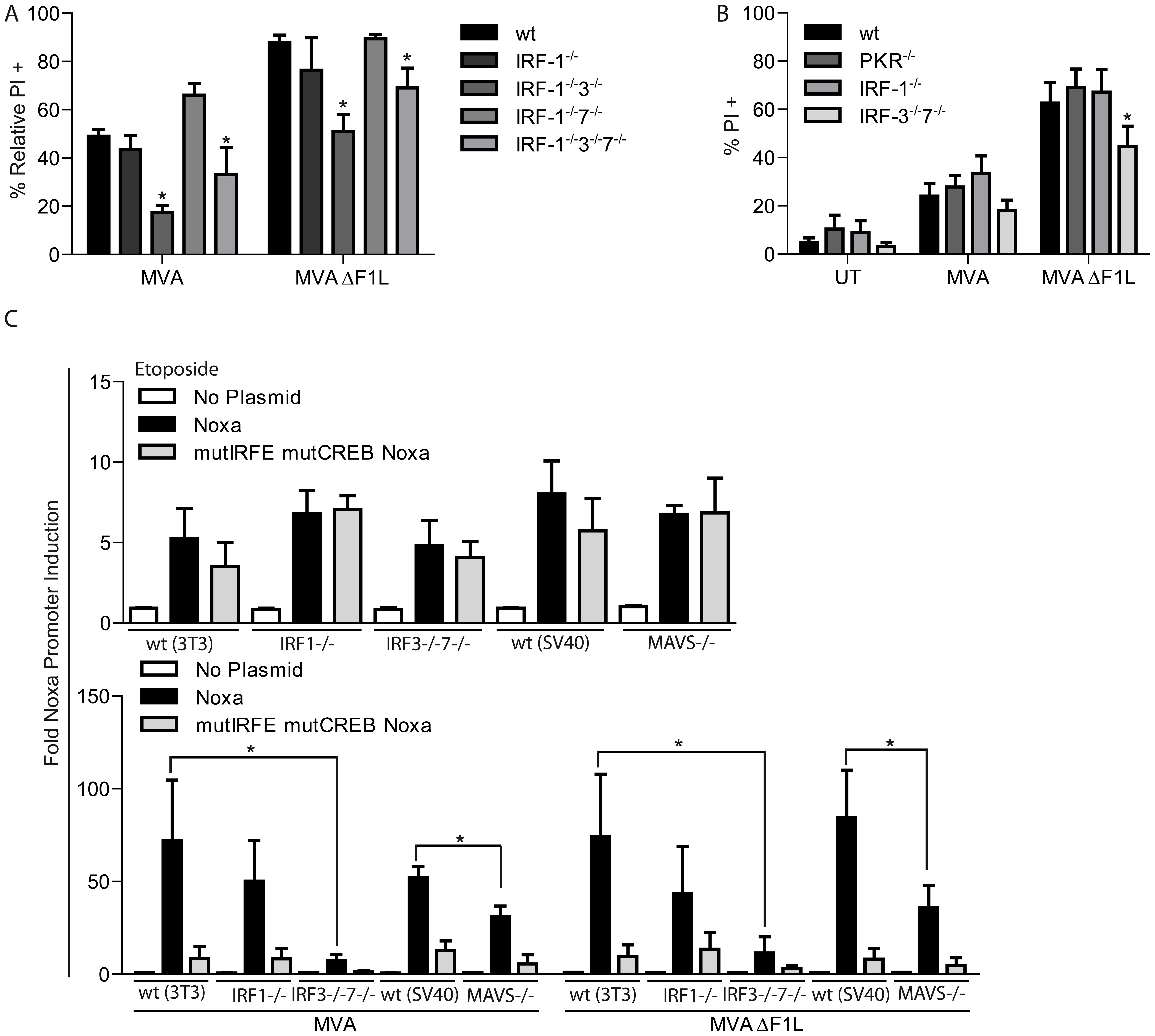 A, B, MVA induced apoptosis requires IRF-3 but not IRF-1, -7 or PKR.