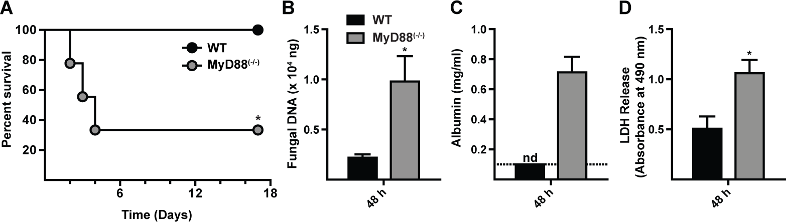MyD88 is critical for survival, fungal clearance, and lung integrity during <i>A. fumigatus</i> challenge.