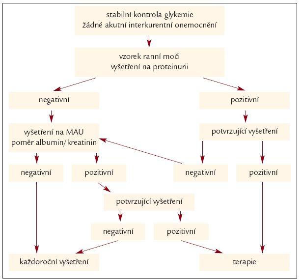 Schéma 2. Plán vyšetření na mikroalbuminurii u diabetu [1,53].