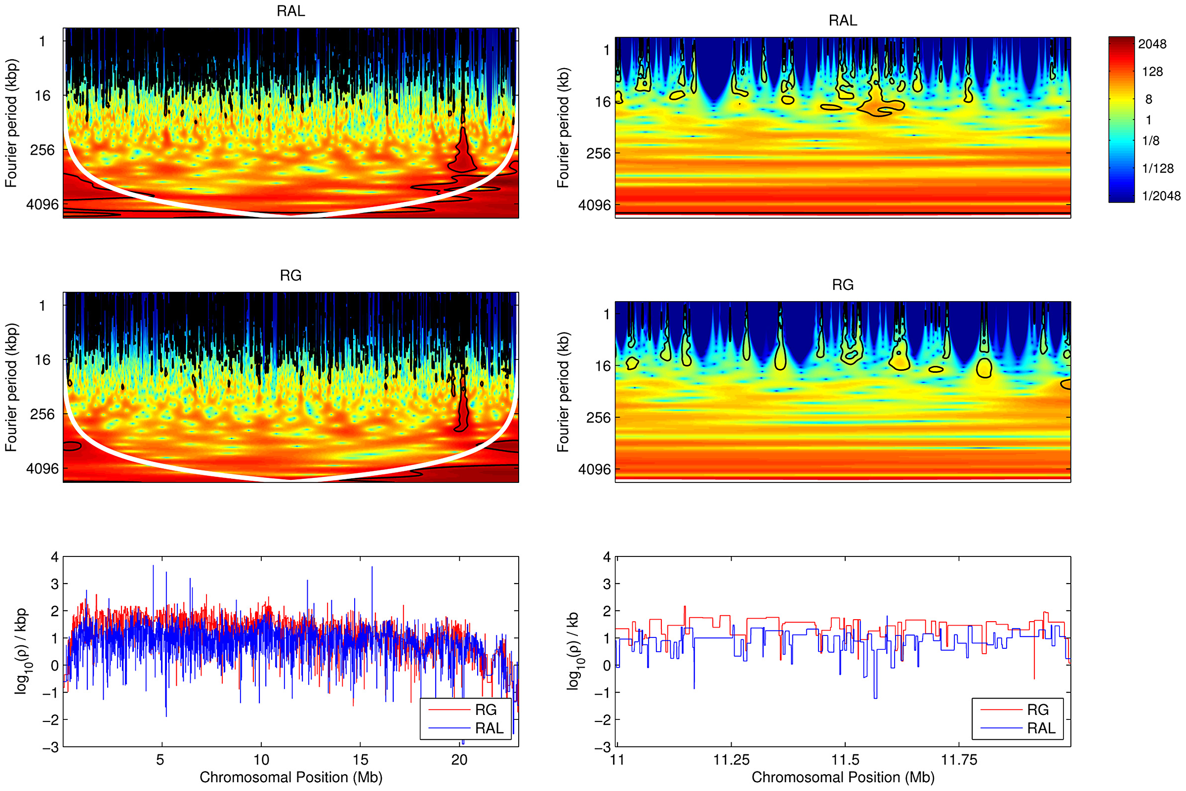 Local wavelet power spectrum of recombination rate variation across chromosome arm 2L.