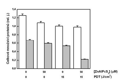 Celkové množství proteinů vanalyzovaných vzorcích – cytozolová frakce (sloupce bez vybarvení), mitochondriální frakce (šedé sloupce). Analýza protei-nů byla provedena na buňkách G361 vystavených účinku PDT. Zobrazená data reprezentují průměrné hodnoty a směrodatné odchylky ze 3 nezávislých měření.