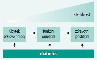 Schéma. Souvislost diabetu a geriatrického syndromu. Upraveno podle [12]