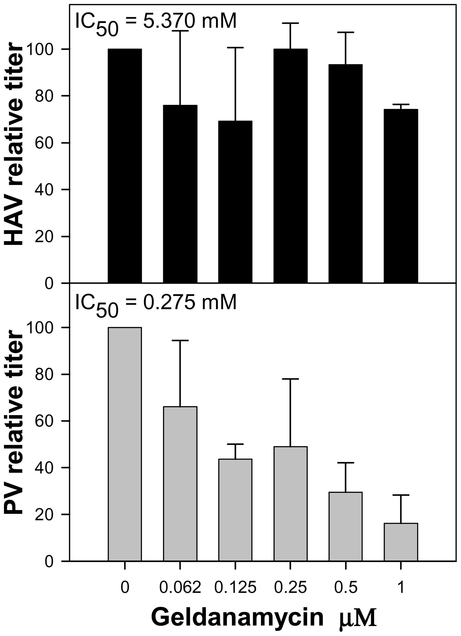 Relative infectious virus production per cell of HAV and PV in the presence of increasing concentrations of geldanamycin, a heat-shock protein 90 (Hsp90) inhibitor.