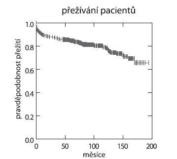 Graf 3a. Přežívání pacientů (IKEM 1995–10/2010, n = 478).