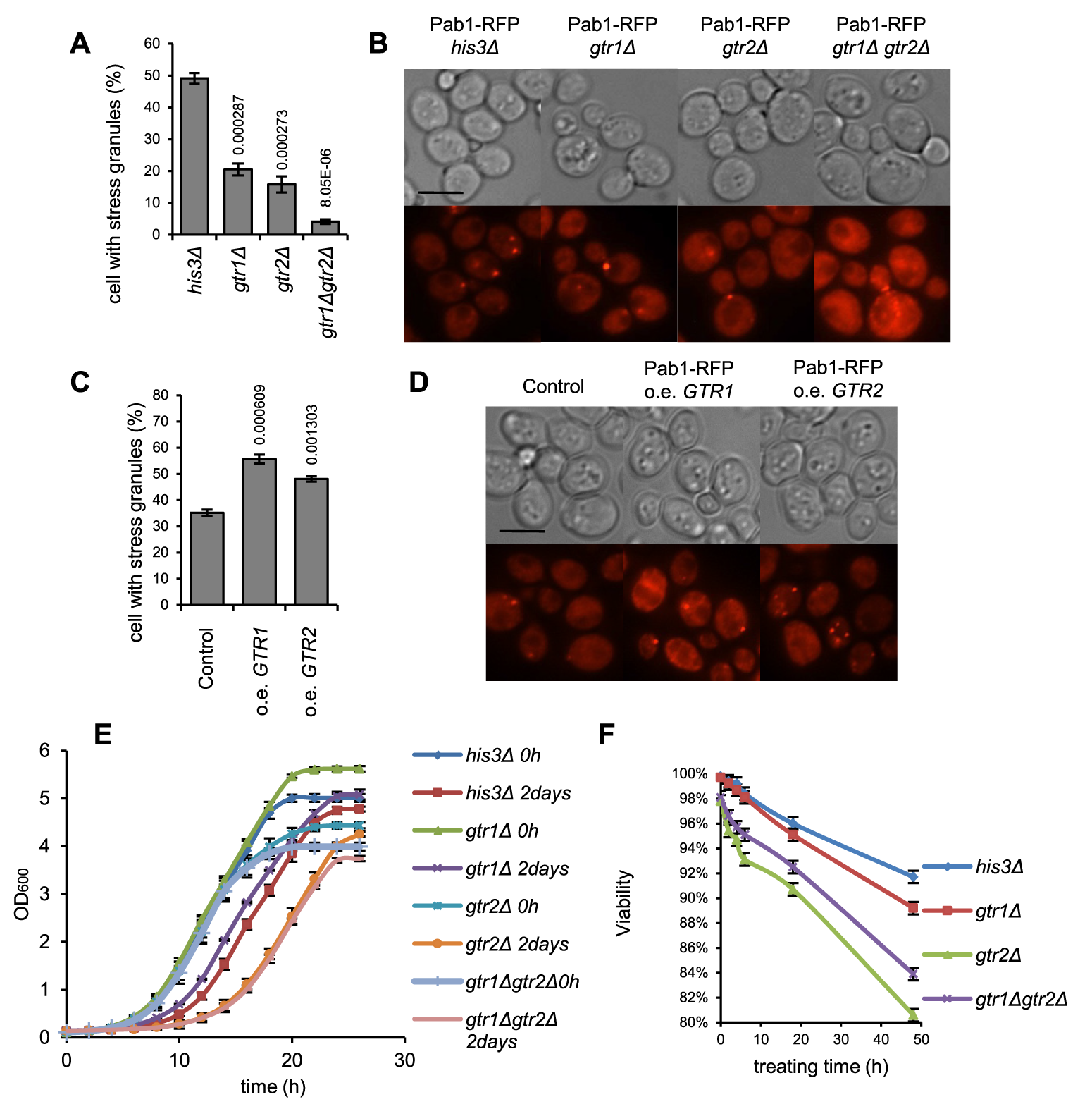 SG formation, recovery and post-stress survival is related to gene dosage of <i>GTR1</i> and <i>GTR2</i>.