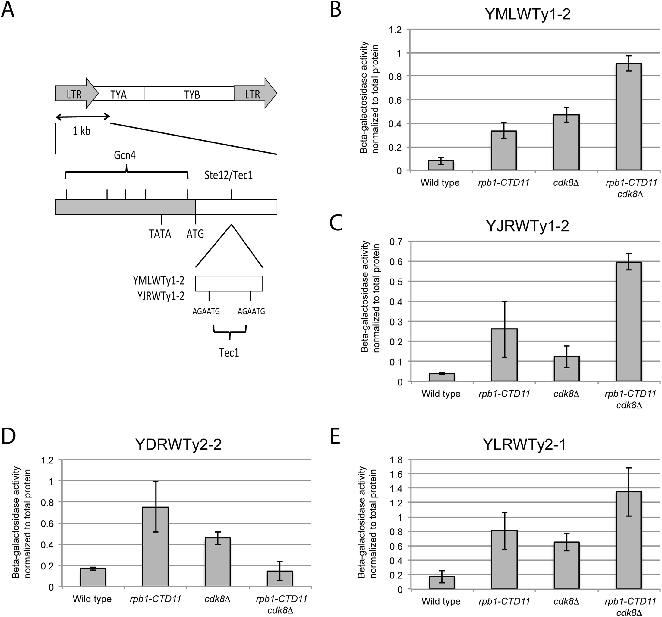 The increased retrotransposon mRNA levels in the <i>rpb1-CTD11</i> and <i>cdk8Δ</i> mutant were in part due to alterations to promoter activity.