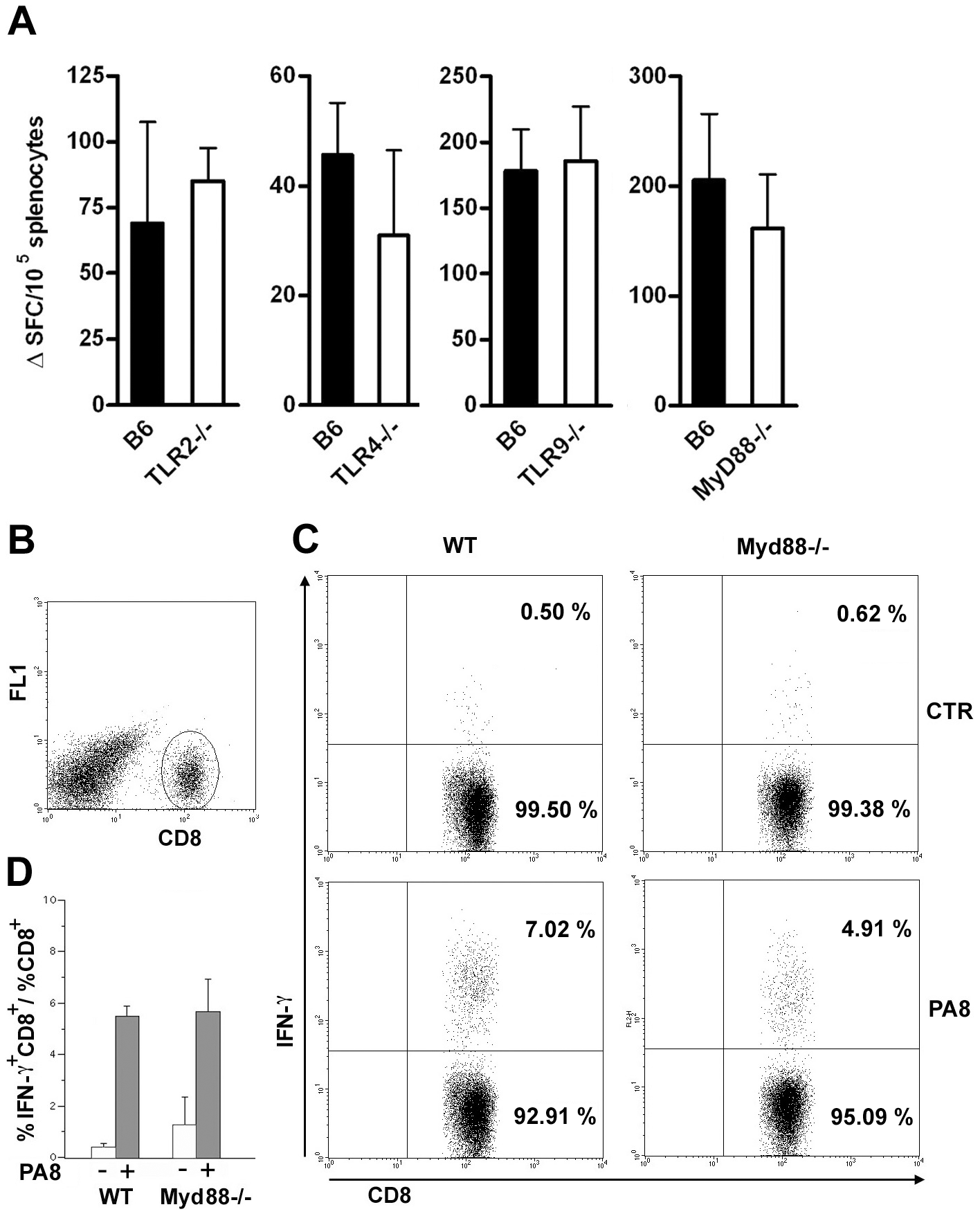 IFN-γ production by CD8<sup>+</sup> T splenocytes is equivalent in infected <i>Myd88<sup>−/−</sup></i>and WT mice.