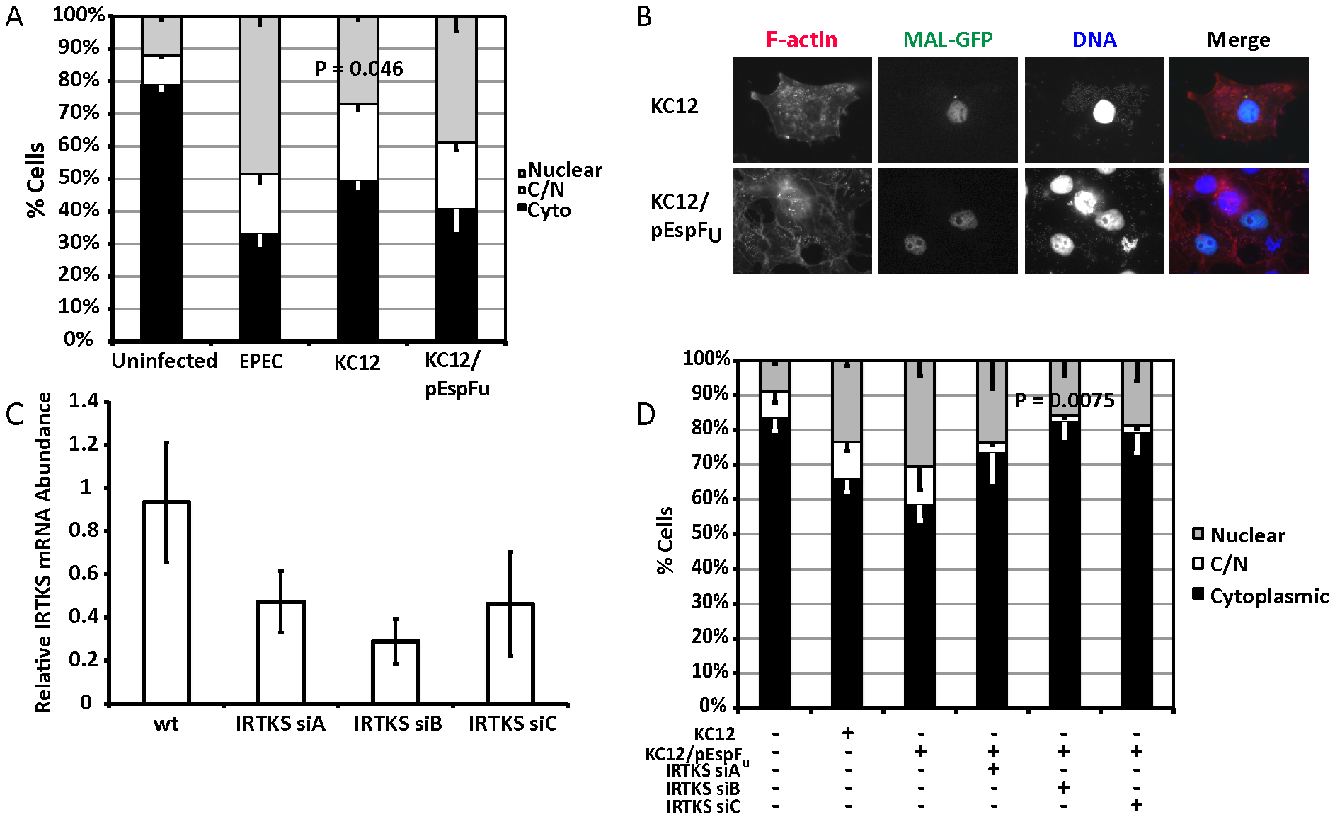 Tir<sup>EHEC</sup> can rescue the EPEC Δ<i>tir</i> loss of MAL-GFP translocation.