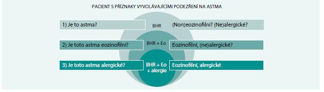 Schéma 2. Tříkroková diagnóza astmatu: zjednodušené schéma.