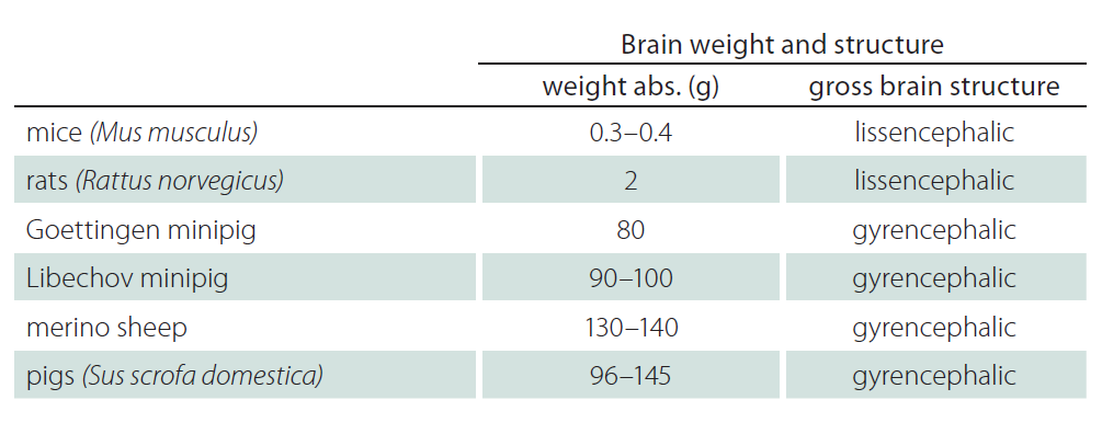Brain volume and brain structure compared between of mice, rats, sheep and pigs.