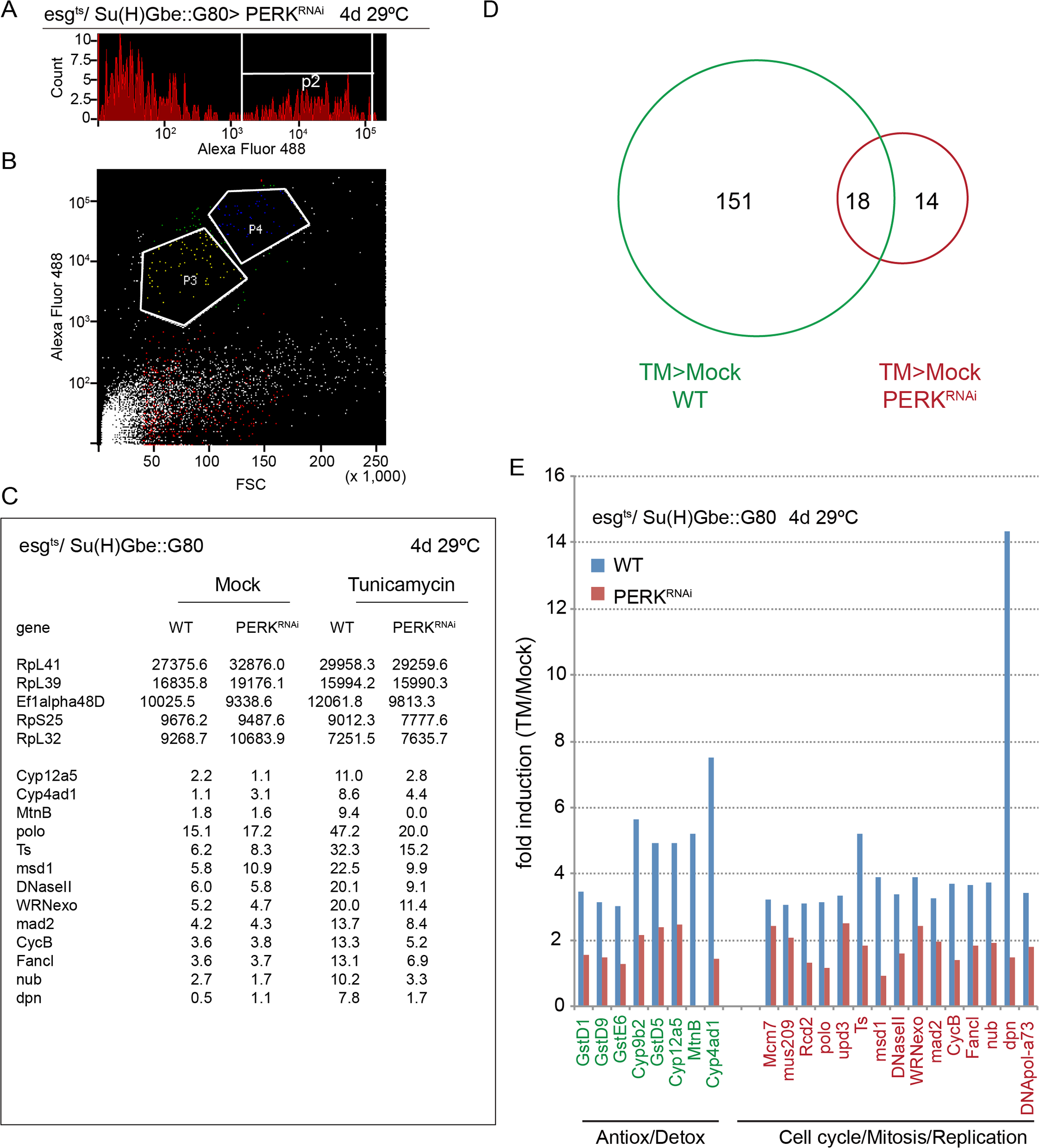 PERK-induced transcriptome changes in ISCs.
