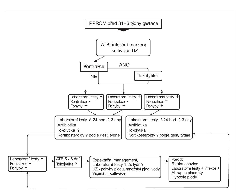 Schéma péče o předčasné porody s PPROM