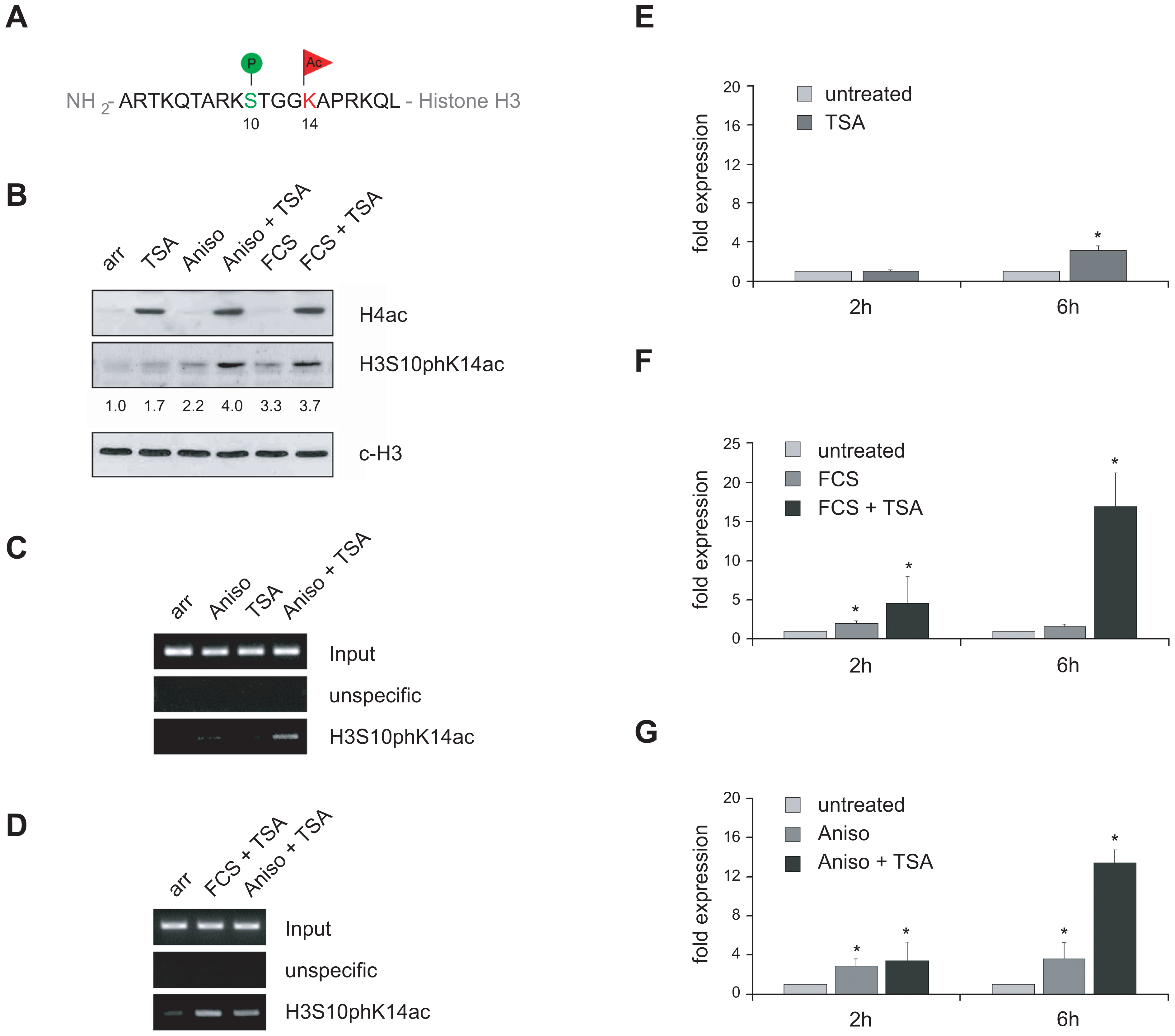 VL30 expression correlates with the formation of a phosphoacetylation mark at chromatin associated with VL30 LTR sequences.