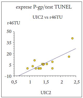 Pozitivní korelace mezi expresí P-gp při detekci protilátkou UIC2 a apoptotickou reakcí buněk B-lymfocytární chronické lymfatické leukemie (B-CLL) po 46hodinové kultivaci při detekci testem TUNEL (r46TU).