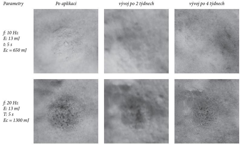 Příklad fotografií vzorků plísně ozařováných vyššími hodnotami, kdy dochází k okamžité destrukci vzorků plísně