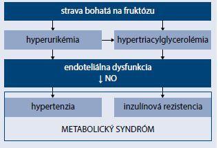 Schéma 1 | Možné mechanizmy fruktózou indukovaného metabolického syndrómu. Upravené podľa [13]