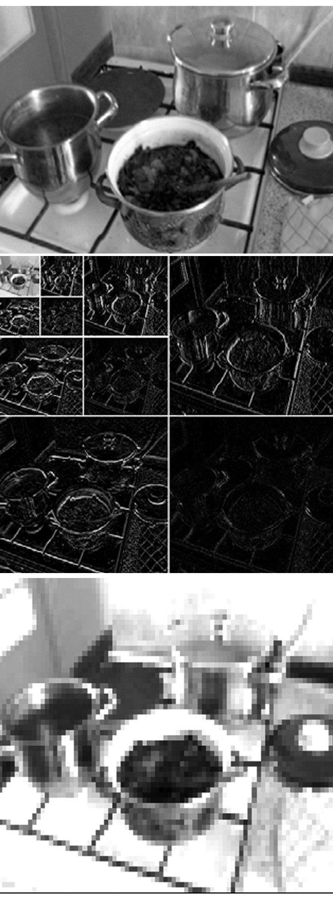 a. Obrazová informace z kamery před kompresí b. Dekompozice obrazu wavelet tranformací do 3. stupně (zmenšení 1 : 64). Kombinací těchto komponent lze bezeztrátově rekonstruovat původní obrázek c. Komprimovaný obraz obsahuje 97,8 % informací původního obrazu a lze jej zobrazit ve 12 stupních intenzity proudu (stupňů šedi) v elektrodovém poli 60 x 40 elektrod na kůži trupu