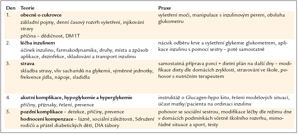 Systém edukace při hospitalizaci – Dětská klinika FN Olomouc. Pětidenní program – návaznost teorie a praxe.