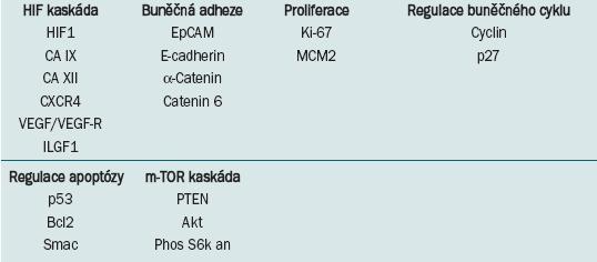 Vybrané potenciální molekulární prognostické a prediktivní parametry u světlebuněčného karcinomu ledviny [13].