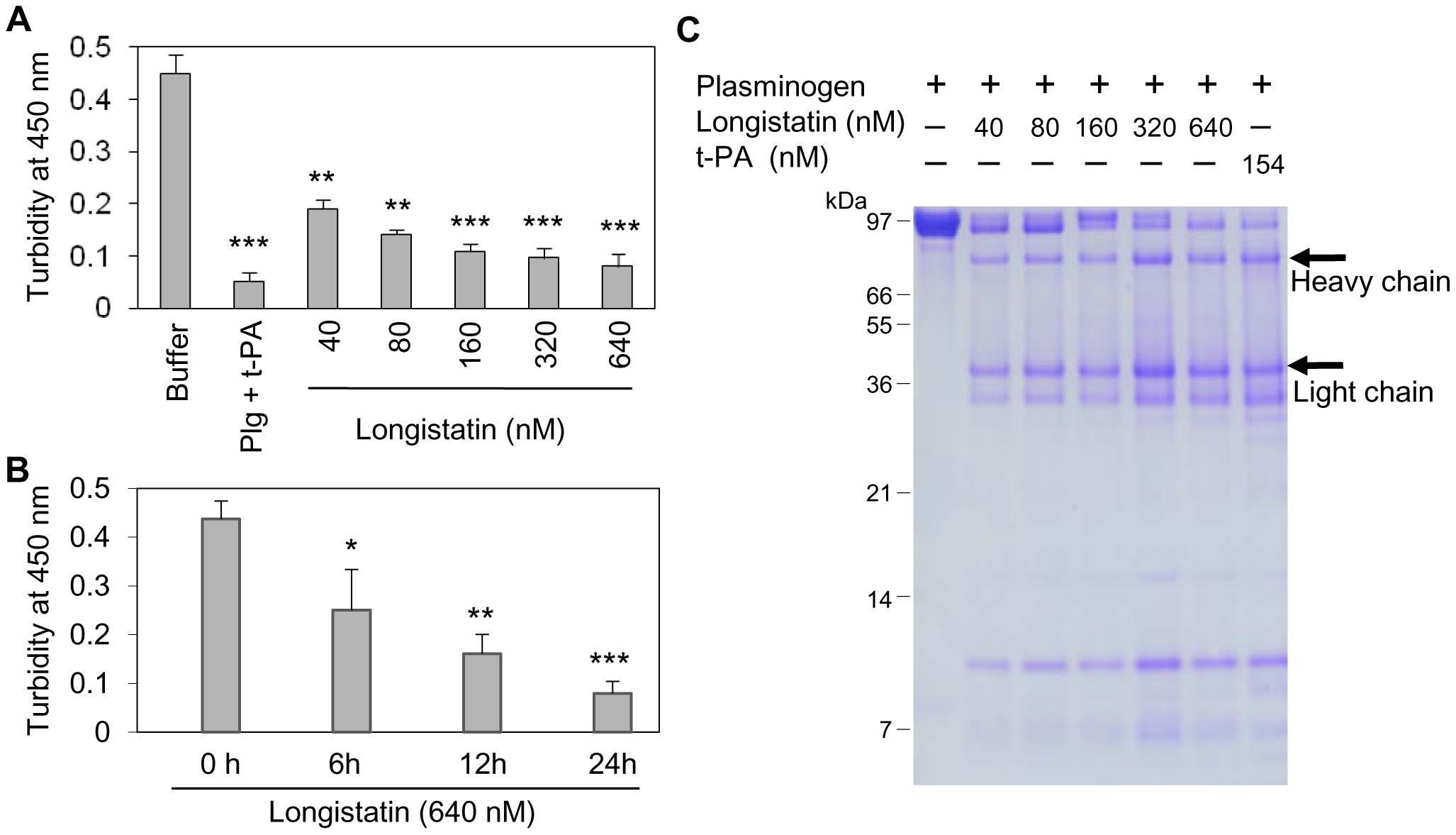 Longistatin induced fibrinolysis by activating plasminogen.