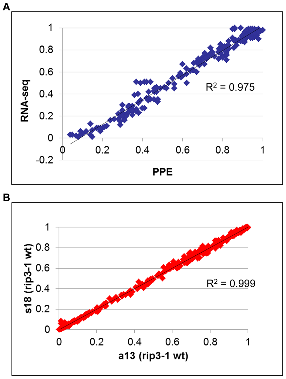 Measurement of RNA editing extent by RNA-seq is accurate and highly reproducible.