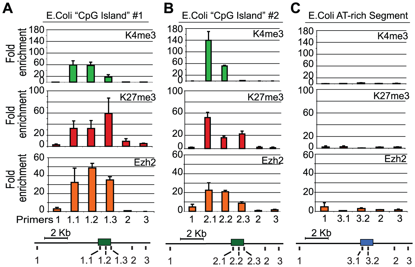PRC2 is recruited to E.coli GC-rich sequences in mouse ES cells.