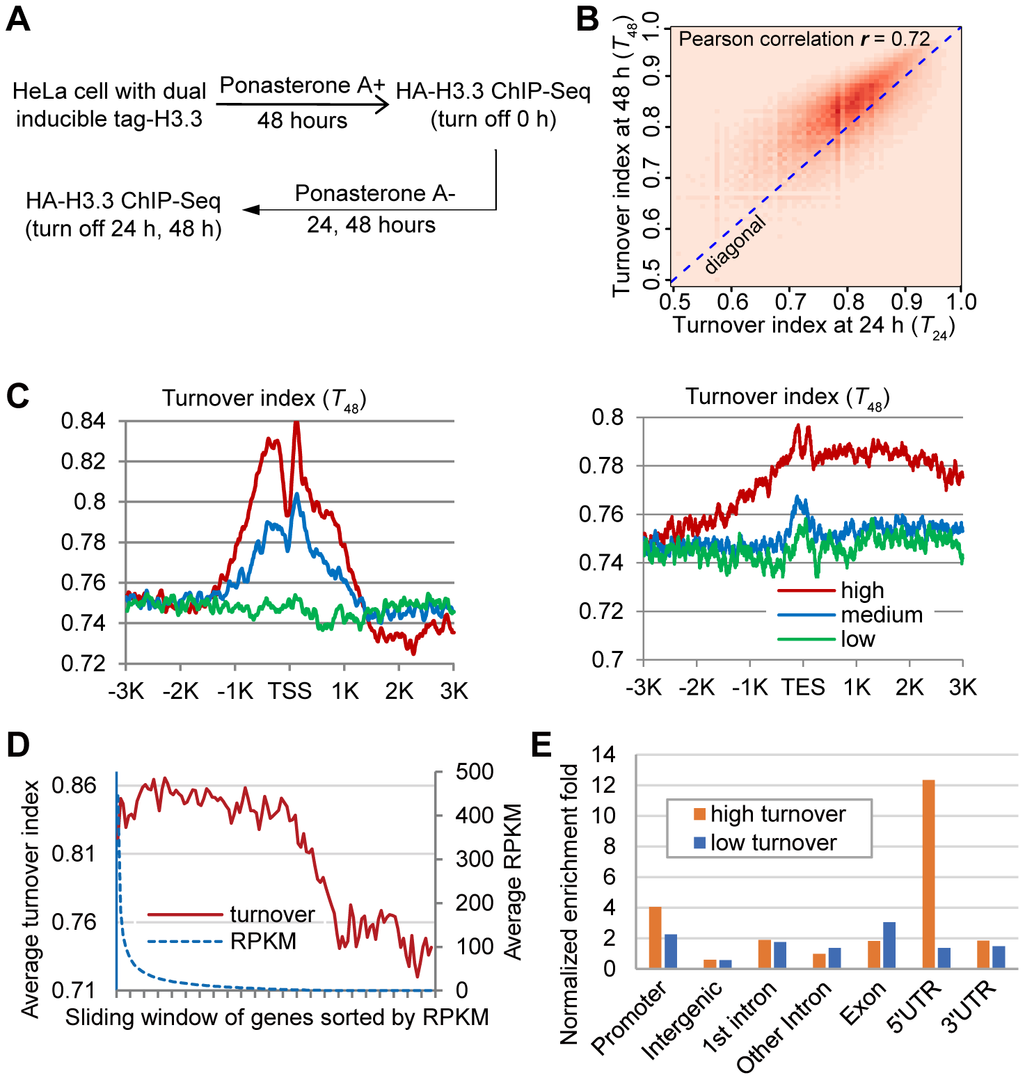 Genome-wide analysis of H3.3 nucleosome turnover.