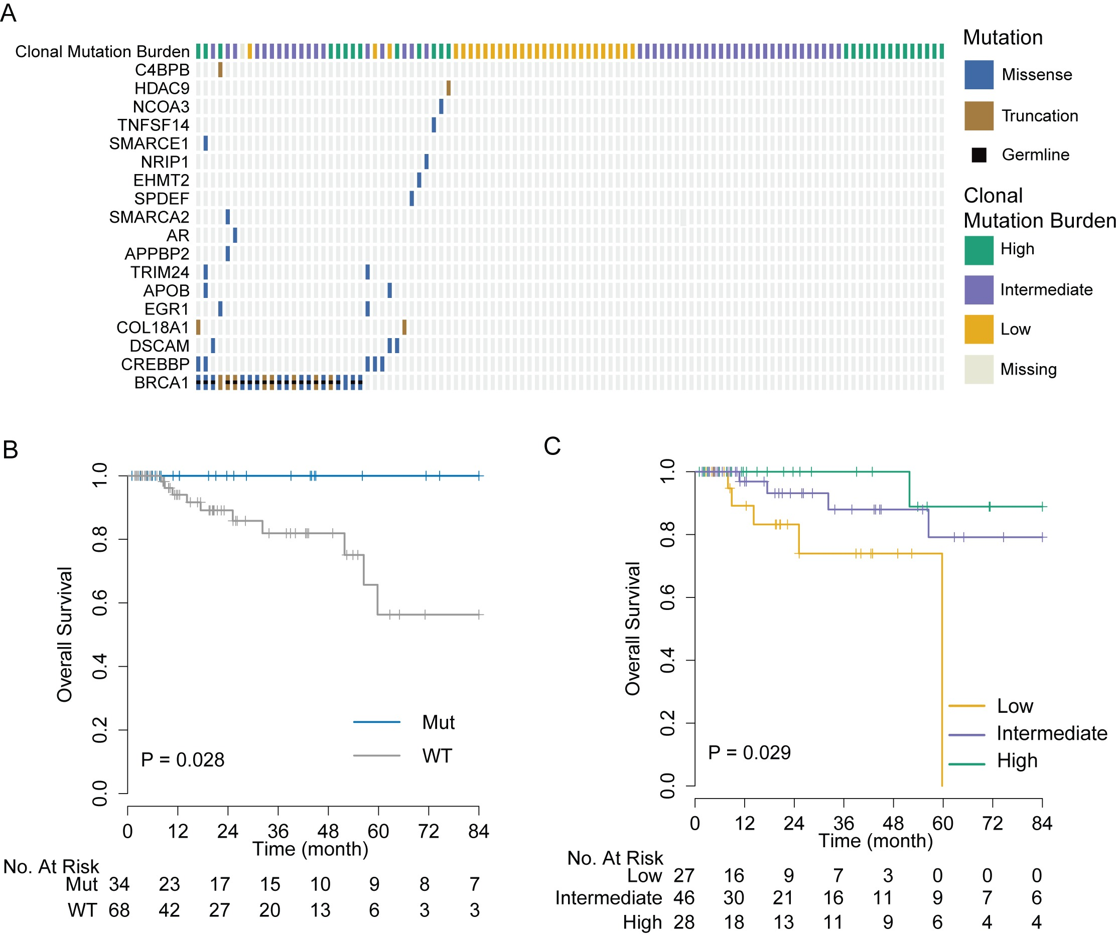 Validation of genomic markers of chemosensitivity in the TCGA triple negative breast cancer cohort.