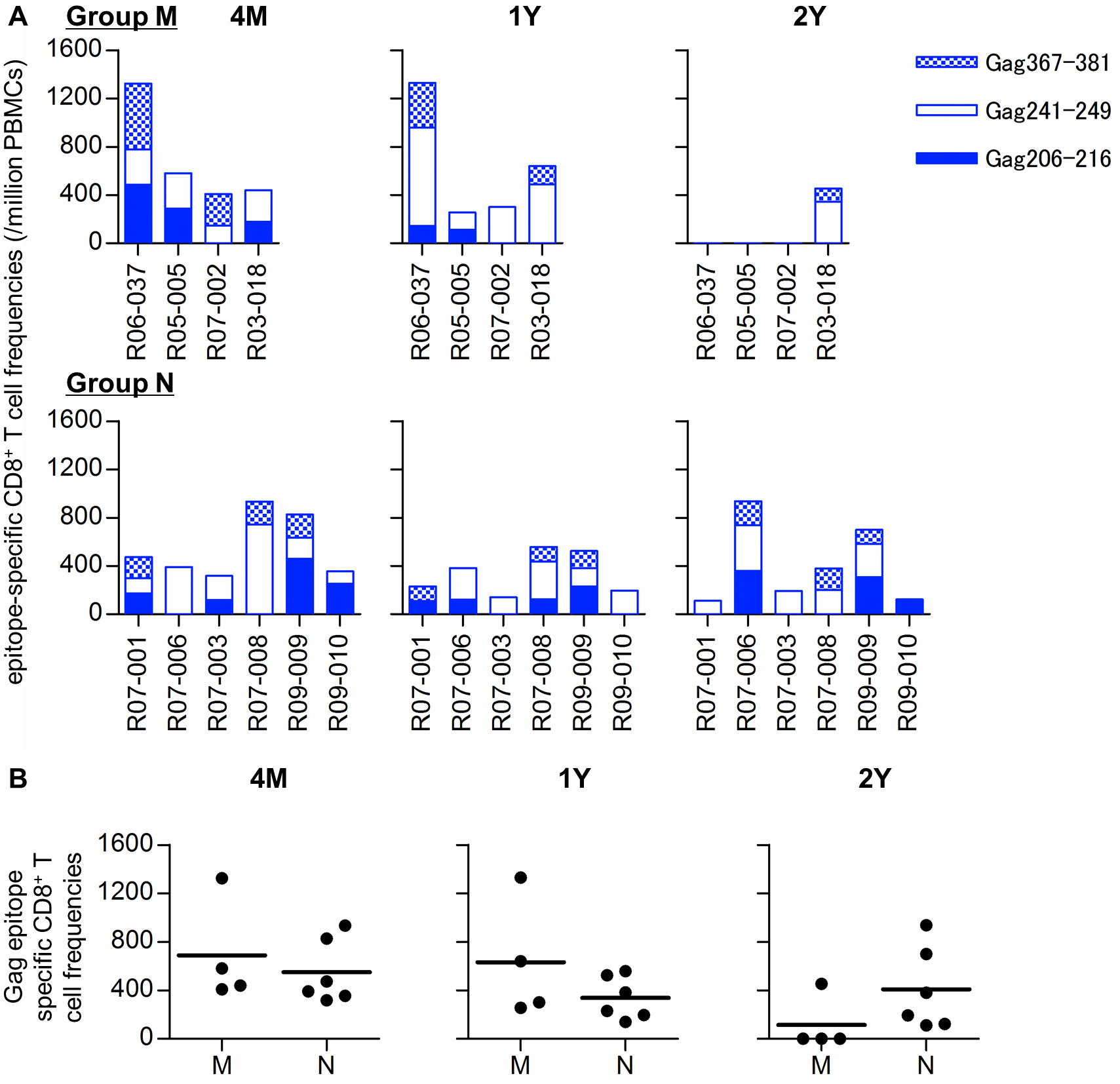 Gag<sub>206–216</sub>, Gag<sub>241–249</sub>, and Gag<sub>367–381</sub> epitope-specific CD8<sup>+</sup> T-cell responses in SIV controllers.