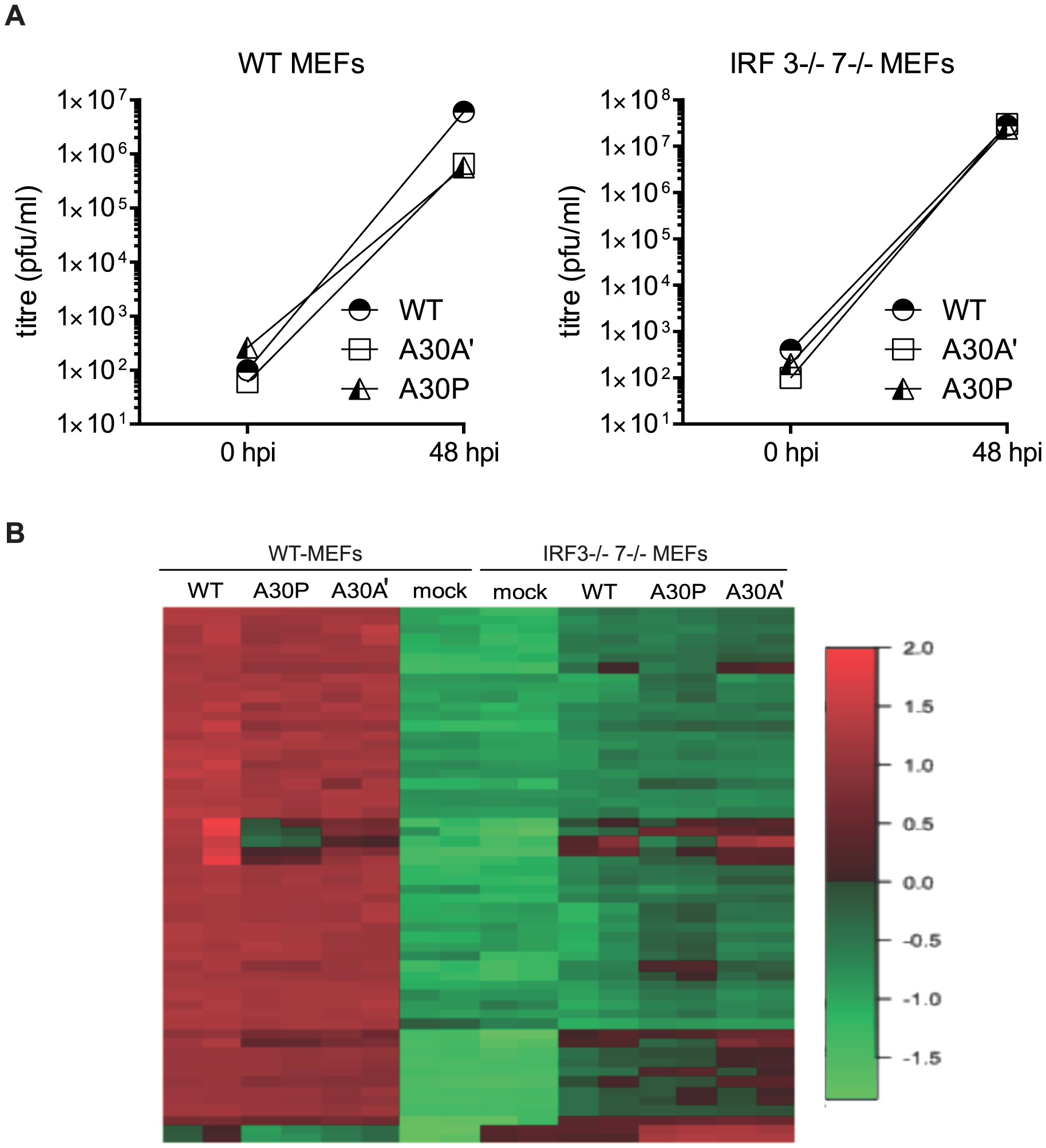 Infection of WT and IRF3<sup>−/−</sup>7<sup>−/−</sup> MEFs with PRF-deficient WNV<sub>KUN</sub> viruses induces differential expression of several genes.