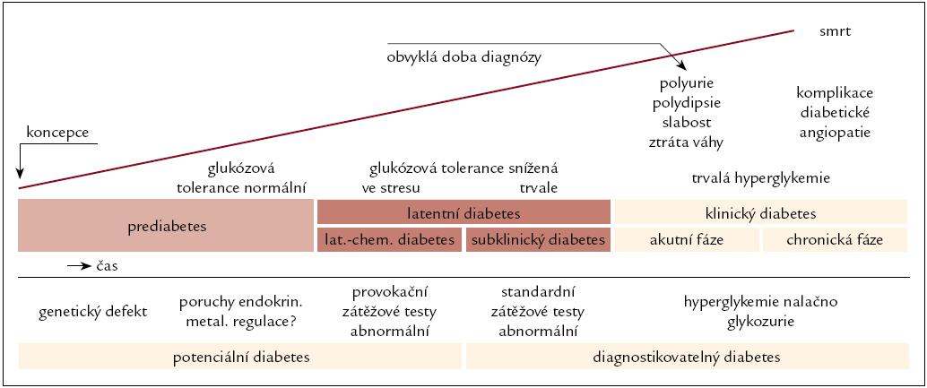 Schéma 1. Schéma průběhu a rozpoznání diabetu. Upraveno podle [30].