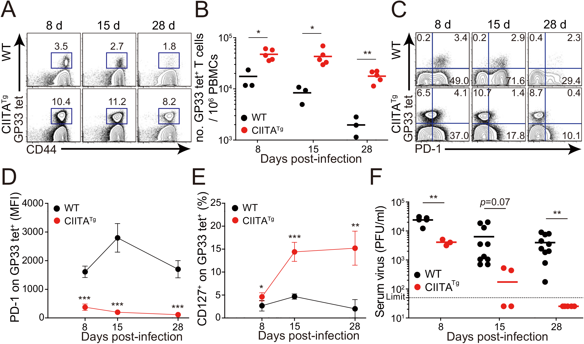 Accelerated viral control in CIITA<sup>Tg</sup> mice during LCMV clone 13 infection.