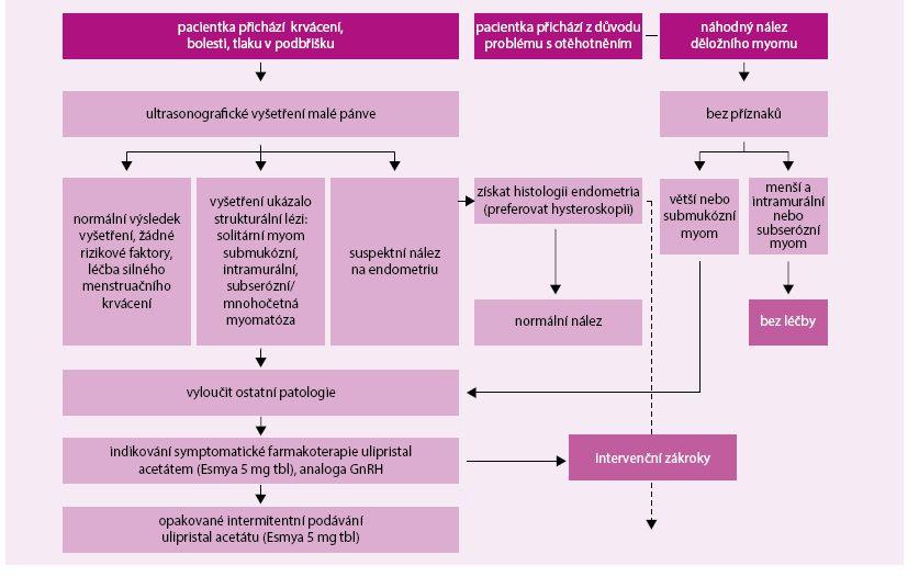 Schéma. Algoritmus diagnostiky a léčby děložních myomů v ambulantní gynekologické péči