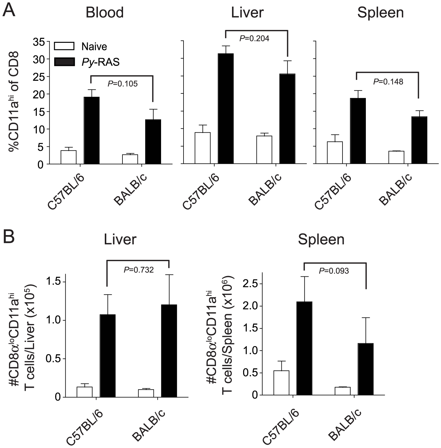 RAS vaccination of BALB/c and C57BL/6 mice increases the frequency and total number of CD8α<sup>lo</sup>CD11a<sup>hi</sup> cells in spleen, liver and peripheral blood.