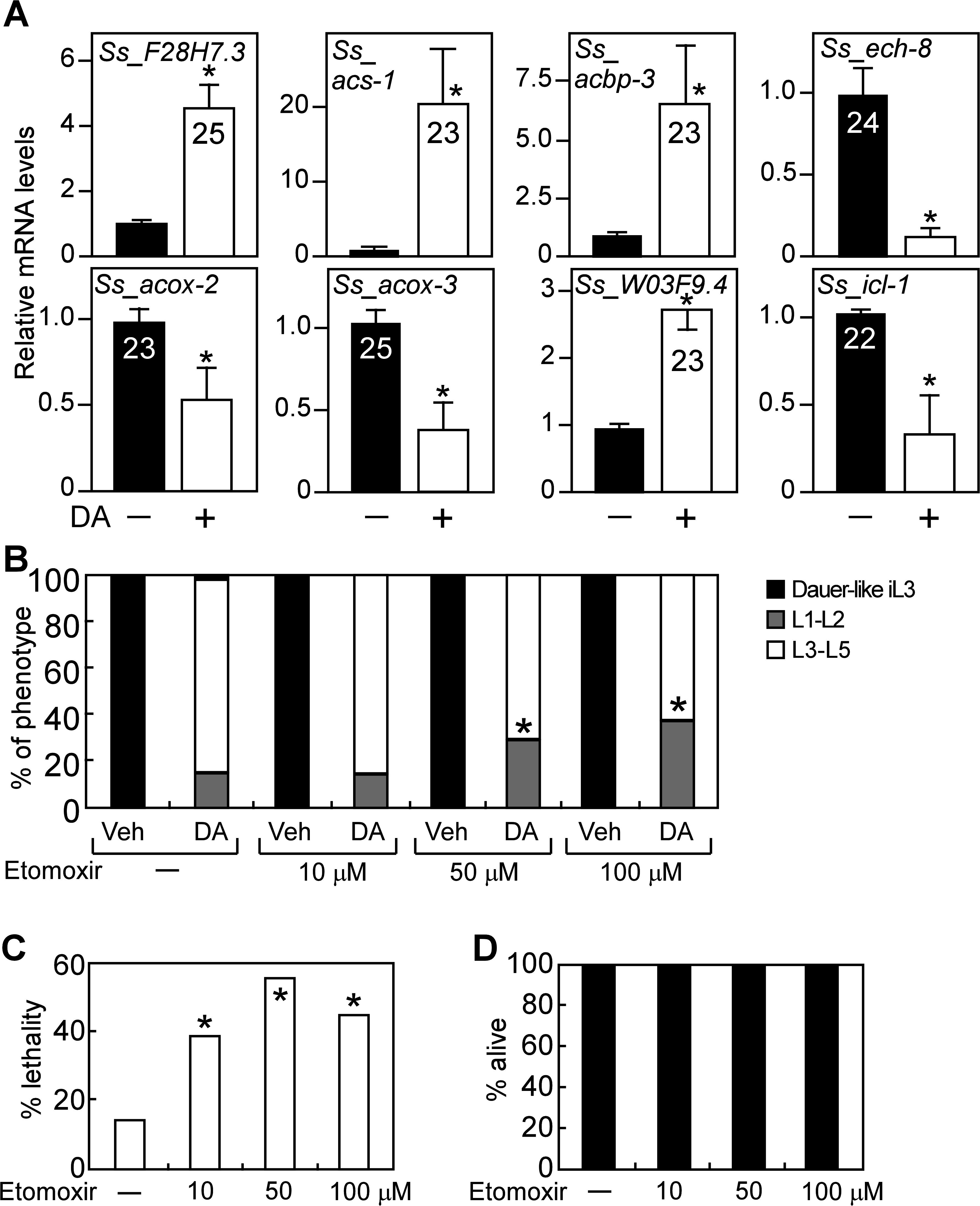DAF-12-dependent regulation of lipid metabolism is conserved in <i>S</i>. <i>stercoralis</i>.