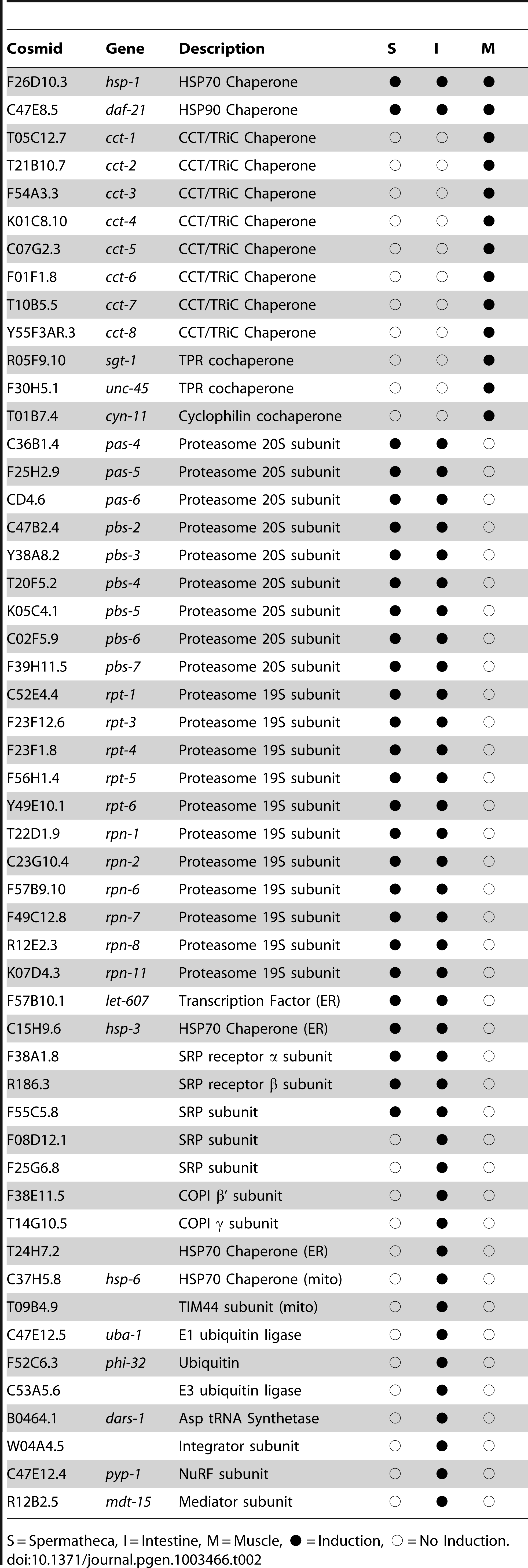 Negative regulators of the HSR and <i>hsp70::gfp</i> reporter induction.