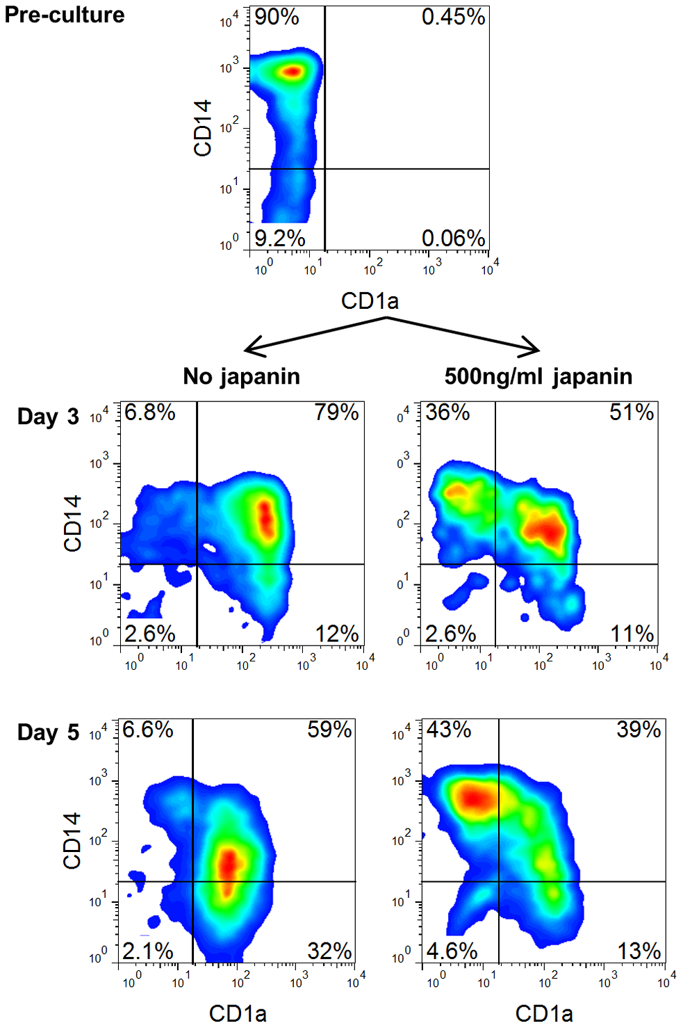 Japanin blocks differentiation of DC from monocytes.