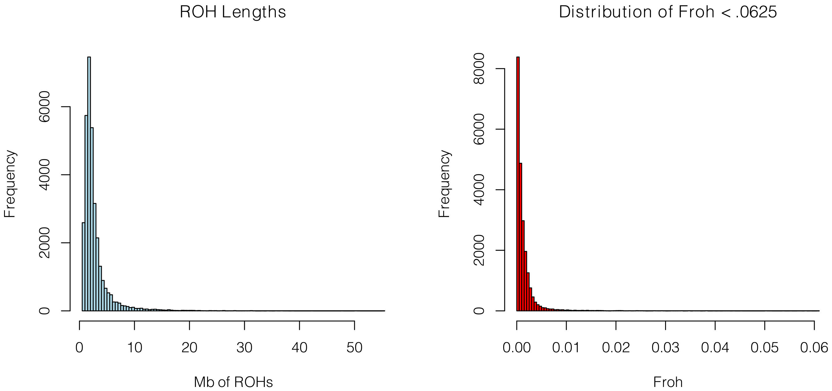 Distributions of ROH Lengths (left) and <i>Froh</i> (right) in the total sample.