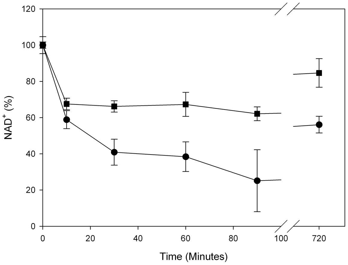 Rapid NAD<sup>+</sup> depletion in NBS patient fibroblasts after DNA damage.
