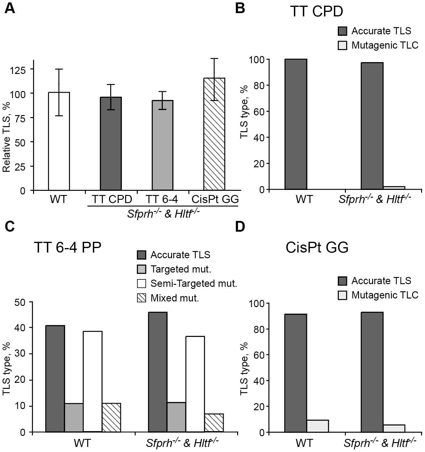 TLS in <i>Shprh<sup>−/−</sup>Hltf<sup>−/−</sup></i> mouse embryo fibroblasts.