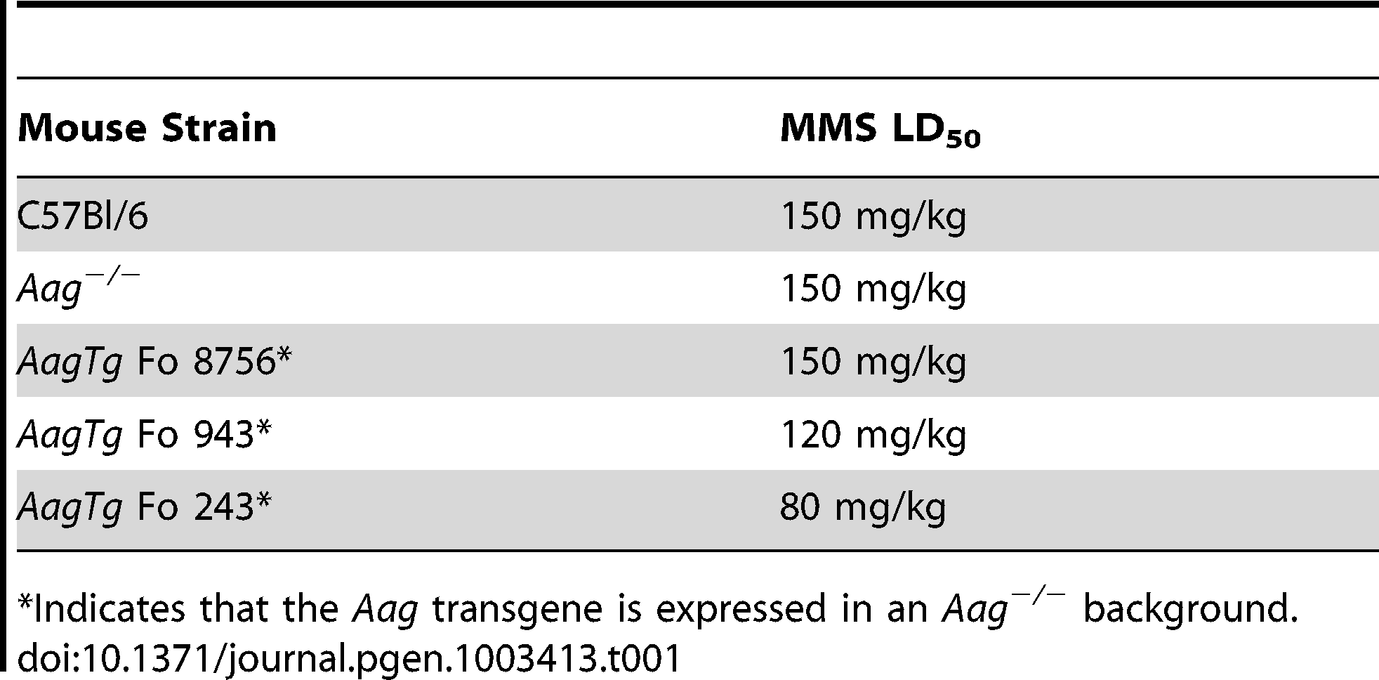 Approximate MMS LD<sub>50</sub> for <i>Aag</i> transgenic mice.