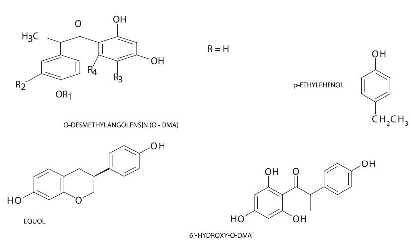 Struktura metabolitů isoflavonoidů 6'-hydroxy-O-DMA