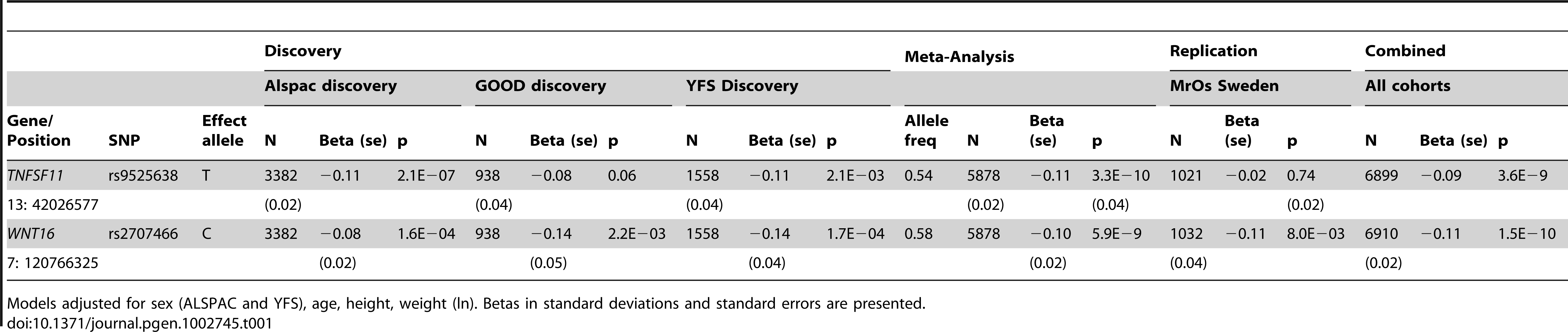 Top cortical thickness GWA meta-analysis hits, with replication and meta-analysis of all four cohorts.
