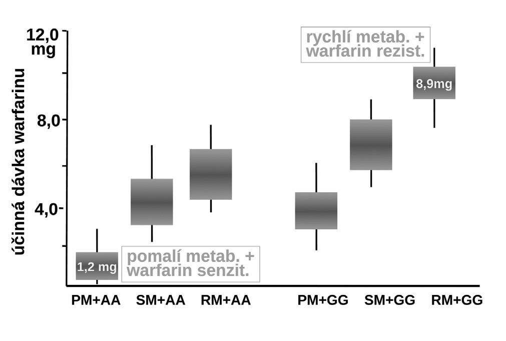 Vliv polymorfismu izoenzymu CYP2C9 a reduktázy vittaminu K - VKORC1 na dávkování warfarinu (19) PM+AA – kombinace polymorfismu warfarin senzitivní + pomalý metabolizátor, SM+AA – kombinace polymorfismu warfarin senzitivní + střední metabolizátor, RM+AA – kombinace polymorfismu warfarin senzitivní + rychlý metabolizátor, PM+GG – kombinace polymorfismu warfarin rezistentní + pomalý metabolizátor, SM+GG – kombinace polymorfismu warfarin rezistentní + střední metabolizátor, RM+GG – kombinace polymorfismu warfarin rezistentní + rychlý metabolizátor
