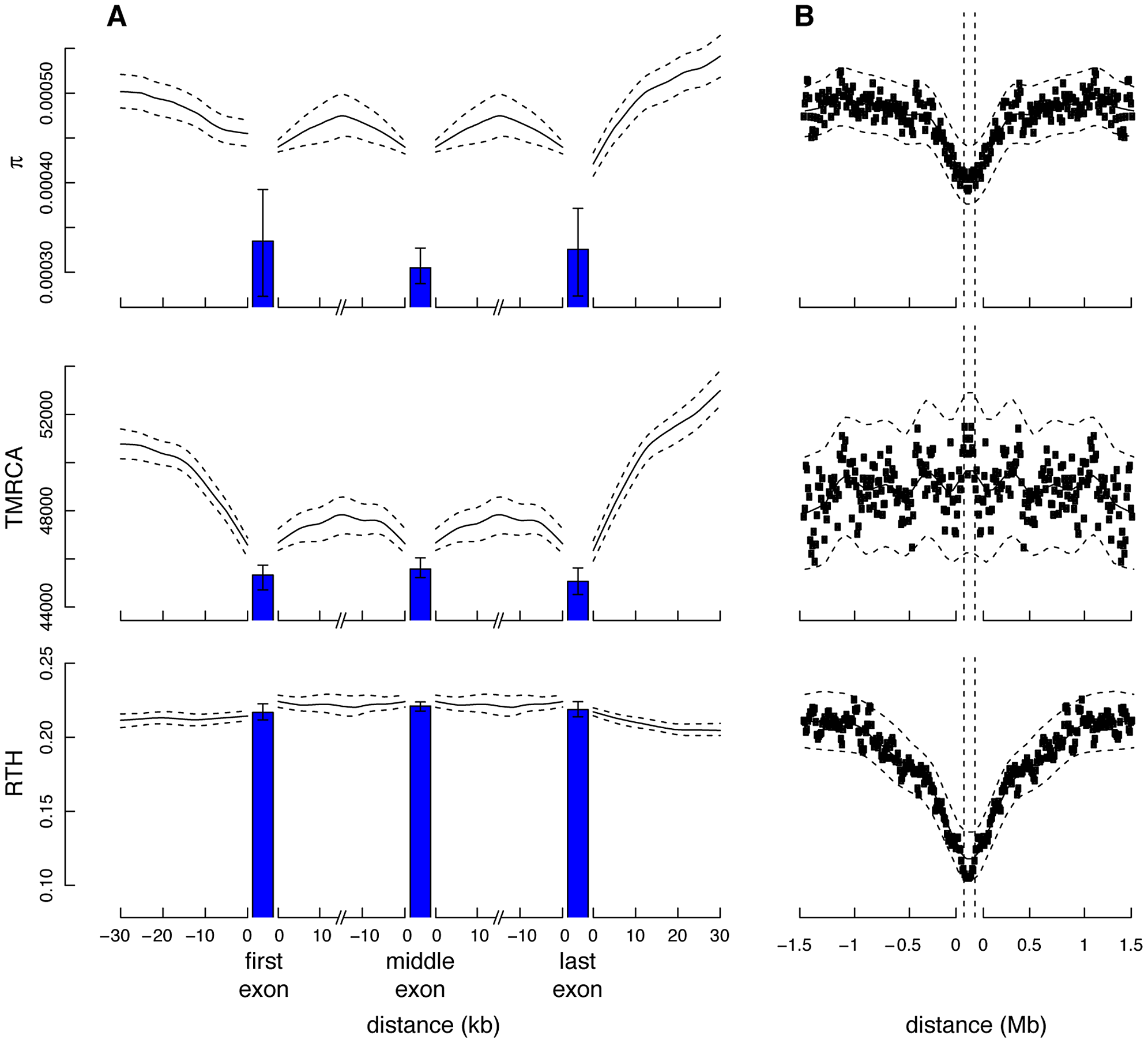 Measures of genetic variation near protein-coding genes and partial selective sweeps.