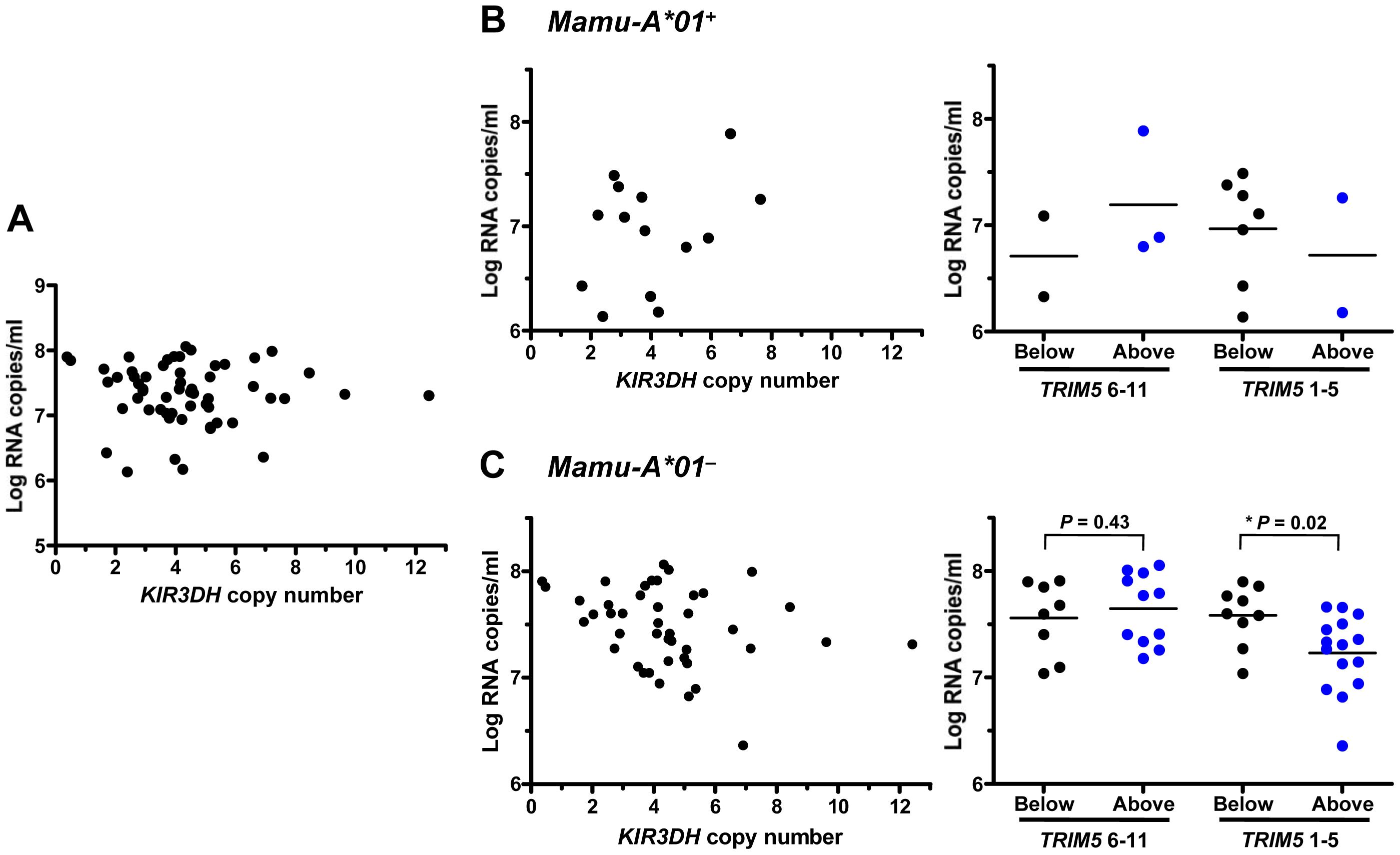 Association of <i>KIR3DH</i> copy numbers and peak plasma SIV RNA levels in Indian-origin rhesus monkeys.
