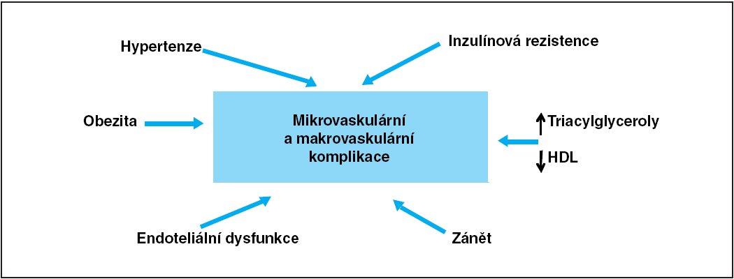 Schéma hlavních faktorů podílejících se na vzniku komplikací diabetu